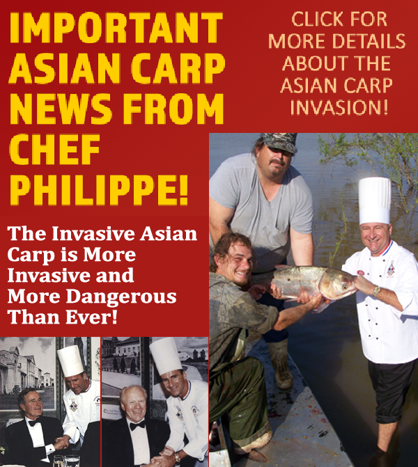 Important Asian Carp News